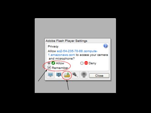 Adobe Flash Player Settings